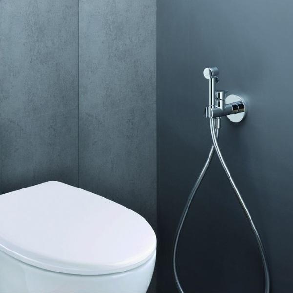 Гигиенический душ в санузле. Зачем он нужен?